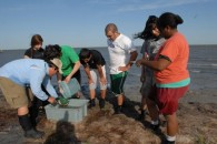 Research Shows Experiential Education on Water Works — UPDATE